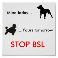 stop_bsl_poster.jpg