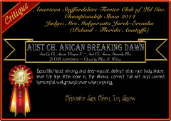 Anican Breaking Dawn.png