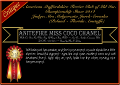 Anitefire Miss Coco Chanel.png