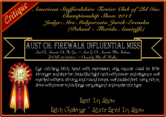 Firewalk Influential Miss.png