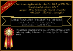 Liberty's Calibre of Rizenstar.png