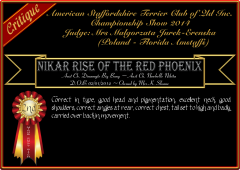 Nikar Rise Of The Red Phoenix.png