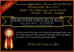 Nikar Strike Force Delta Blue.png