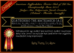 Quatroniko The Matriarch.png