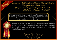Staffwild Super Overdrive.png