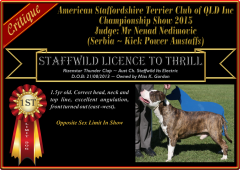 Class 8 ~ 1st ~ Staffwild Licence To Thrill.png