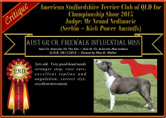 Class 9a ~ 2nd ~ Firewalk Influential Miss.png