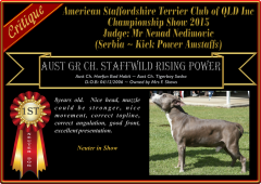 Class18~1st~StaffwildRisingPower.png