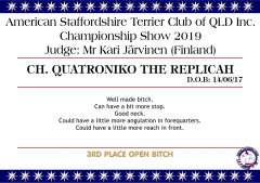 Ch. Quatroniko The Replicah.png