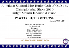 Pawtucket Footlose.png
