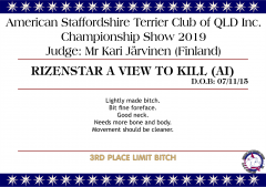 Rizenstar A View To Kill.png