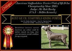 Class18~2nd~StaffwildRisingPower.png