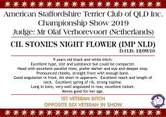 Ch. Stonil's Night Flower.png