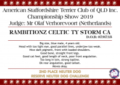 Rambitionz Celtic Ty Storm CA.png
